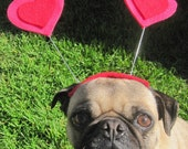 Valentines day HEART HAT for pets all sizes - ORDER by Feb 8th for a V day Delivery! Guaranteed!