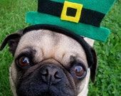 Saint Patrick's Day LEPRECHAUN Hat fitting ALL size pets