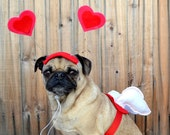Valentine's Day Love package - CUPID WINGS and HEART hat fits all size dogs or cats