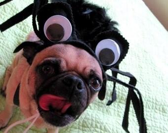 Pet Costume - Creepy Itsy Bitys SPIDER pet costume  small or medium
