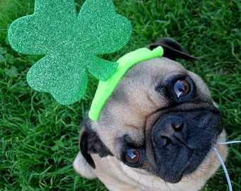 IRISH LUCKY dog or cat hat fits all sizes - Saint Patricks Day Party