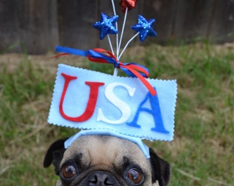 Happy 4th of July USA party hat for any size pet