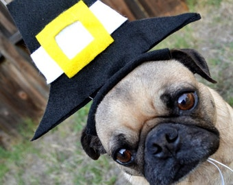 PILGRIM hat fits all size pets - Thanksgiving Party Decor