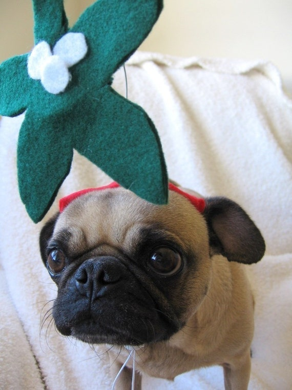 KISS ME pet mistletoe hat fits all sizes ---INCLUDE your pet in your Holiday Party