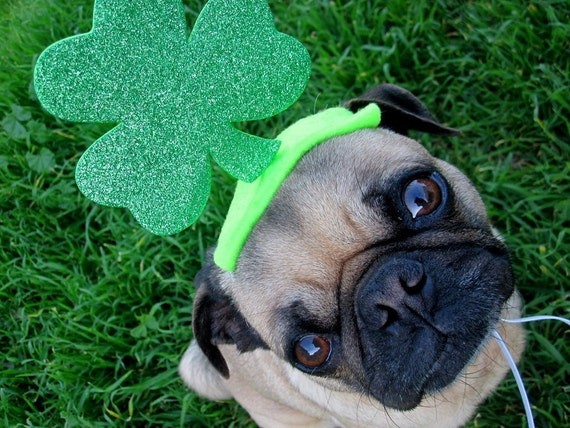 saint patrick's day decoration - IRISH LUCKY dog or cat hat fits all sizes
