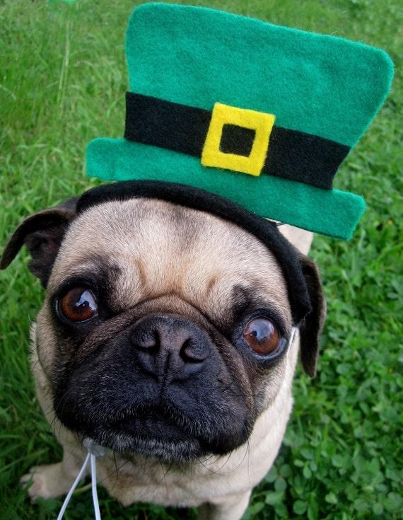 Saint Patrick's Day LEPRECHAUN Hat fitting ALL size pets