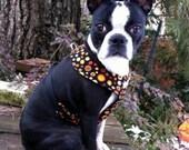 Comfort Soft  Dog Walking Harness- Nutmeg Spice