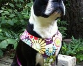 Dog  Walking Harness in Groovy Girl Peace print
