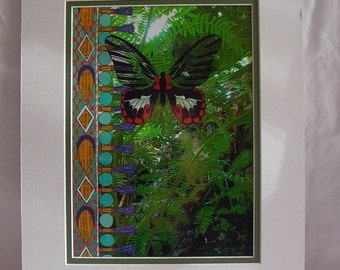 Tropical Butterfly Illustration Print with Mat - Scarlet Swallowtail - Filipino Textiles