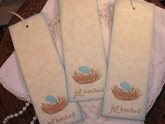 Baby Shower Wish Tags Bird Nest Set of 25
