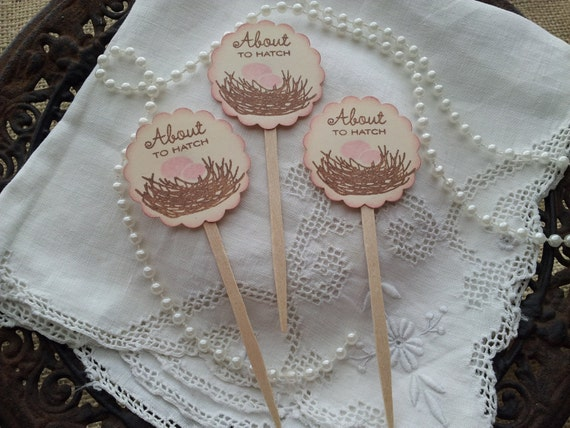 Cupcake Toppers Baby Shower Nest About to Hatch Set of 12