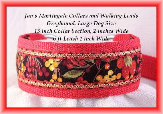 Martingale Collar and Leash Combination Walking Lead, Large Dog, Greyhound Size, Red