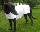 Greyhound Cool Down Coat, large, white