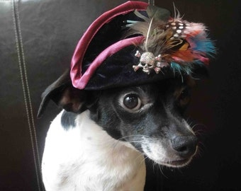 Pirate hat for dog or cat fit xs, s, m sizes