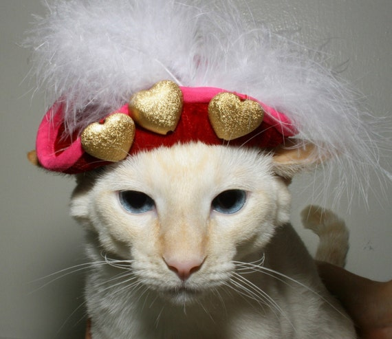 Cute hat for dog or cat with gold heart