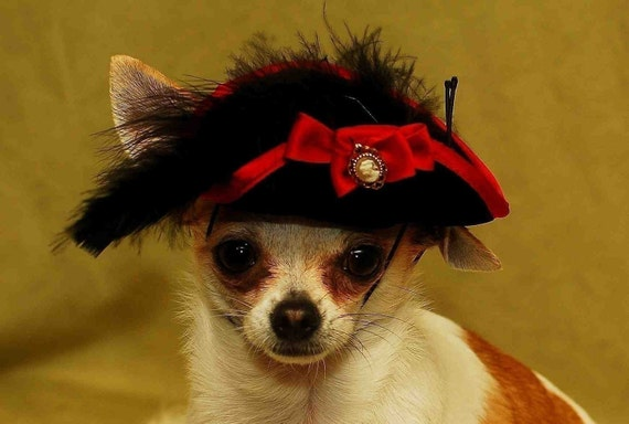 Pirate hat for dogs and cats fit xs,s,m sizes