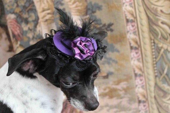 Cute purple  color  mini  hat with   feather and   flowers for dog or cat