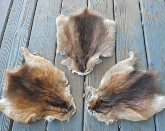 Muskrat Fur Pelt - One Full Skin