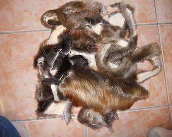 Salvaged Beaver Fur Scraps - Half Pound Bag