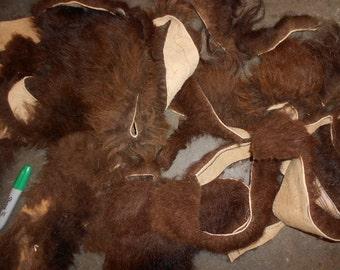 Salvaged Bison Buffalo Fur Scraps- 1 pound Bag