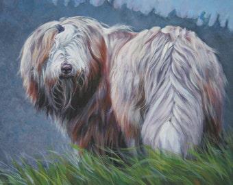 Bearded Collie dog art CANVAS print of LA Shepard dog painting 8x10