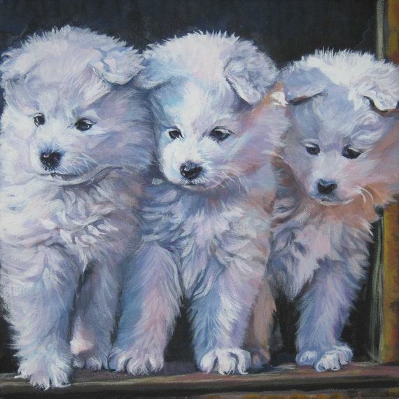 Samoyed art CANVAS print of LA Shepard painting 12x12 dog art