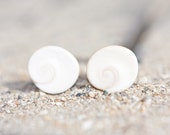 Shiva Eye Shell Stud Earrings Sterling Silver Swirl turbo sea snail white beach fashion aqua marine nautical vacation
