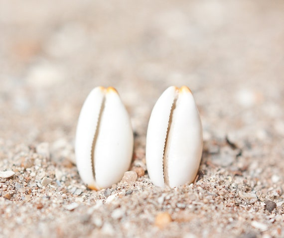 Sea Shell Stud Earrings Sterling Silver Cream Ivory white beach fashion eco-friendly aqua sand nautical vacation