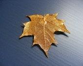 vintage gold Midas Touch Maple Leaf pendant