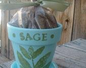 hand-painted herb kit SAGE