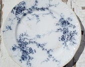 RESERVED Vintage English Transferware Plate Blue and White Princess Pattern