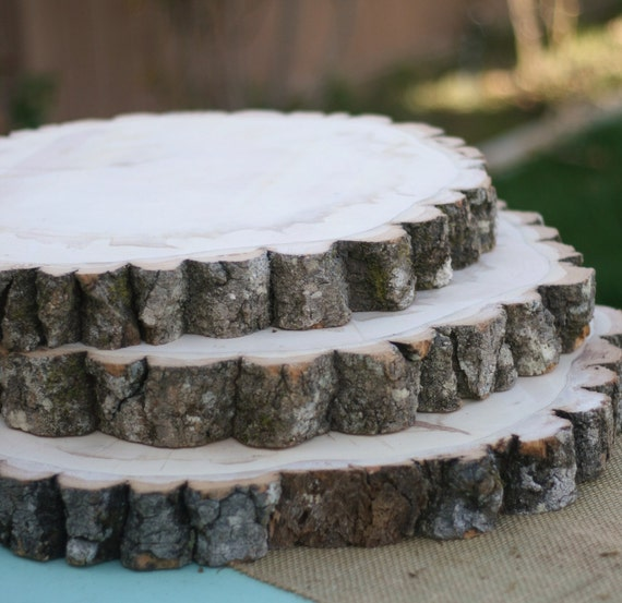 Items similar to large huge natural wood tree slice with for Tree trunk slice ideas