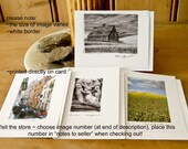 ANY PHOTO IN MY SHOP 4 Note Cards by Pam Lefcourt
