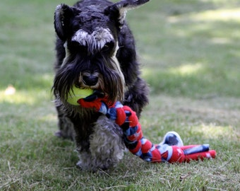 Tennis Ball Tug - Great Dog Toy made by Doodlebug Duds