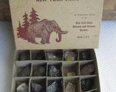Vintage 1960s Rocks and Minerals of New York State Specimen Kit