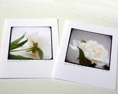 Set of Four Notecards - White on White