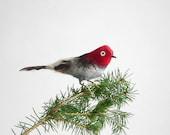 Vintage Bird Ornament - Antique, Christmas, Animal, Holiday