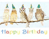 Birthday Owls, one cards with envelope by Lise Winne