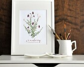 Cranberry 8.5x11 -Culinary Art- Collection