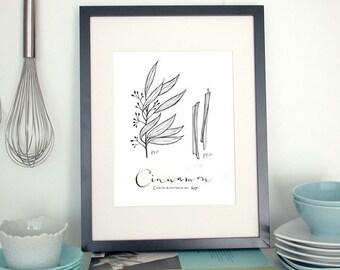Cinnamon 8.5x11 -Culinary Art- Collection
