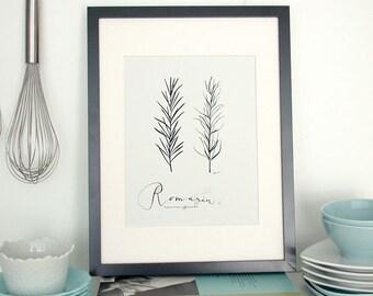 Romarin 8.5X11 - Collection -Art Culinaire-