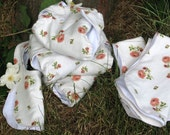Rose Patterned Diaper Set - 5-15 lbs - Liquidation price