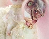 Rufulfa and Fifiusca - art doll ooak fantasy