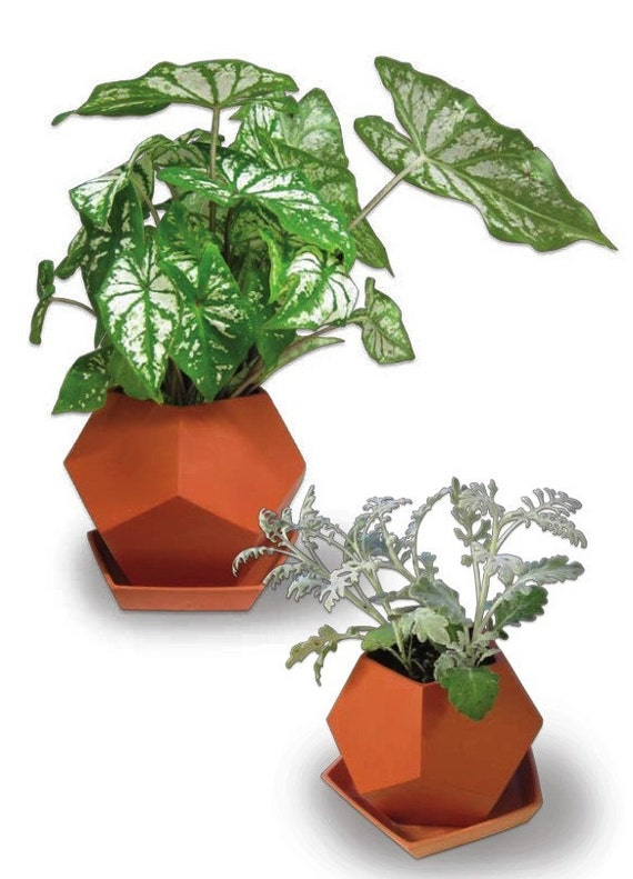 Faceted Planter - large