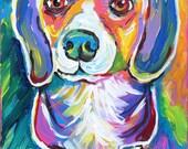 Pop Beagle II