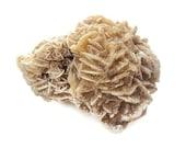 Large Selenite Desert Rose, Rough Gemstone Specimen, Gypsum & Barite, Rock, Metaphysical, New Age Healing Supplies, Reiki, 235.3 grams