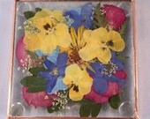 Dried Flower Beveled Glass Coasters