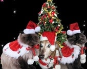 Santa Costume Christmas Holiday cape and Santa hat for dogs and cats