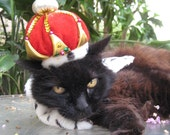 The Crown Jewels Crown hat and Wild Side Reversible collar for cats and dogs
