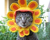 Late Bloomer flower hat for cats and dogs